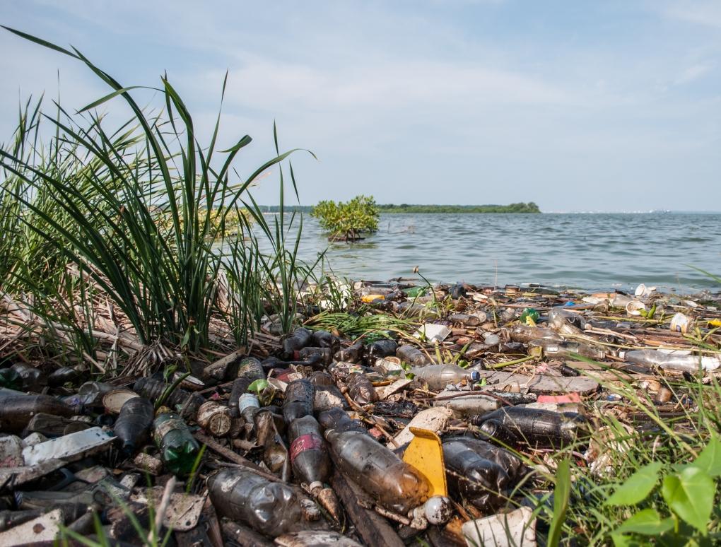 Contaminación_en_el_Lago_de_Maracaibo,_Estado_Zulia