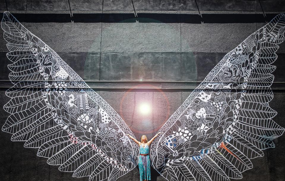 wings-2895137_960_720.jpg